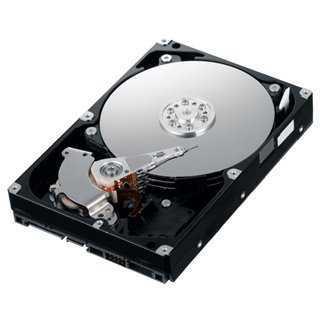 """WESTERN DIGITAL used HDD 320GB, 3.5"""", SATA"""