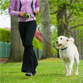 Λουράκι σκύλου με ιμάντα & stop ANM-0004, 5m, πράσινο