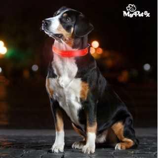 LED Κολάρο για Σκύλους My Pet EZ