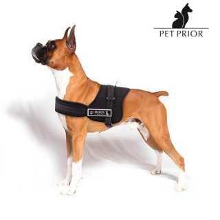 Ρυθμιζόμενο Λουρί για Σκύλους Pet Prior